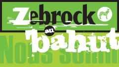Le silte de Zebrock